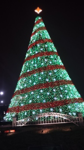The National Tree at the Ellipse