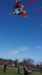 C.A.B.'s Kite