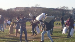Pillow Fight National Mall 2015